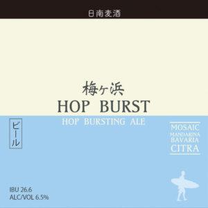 梅ヶ浜 Hop Burst